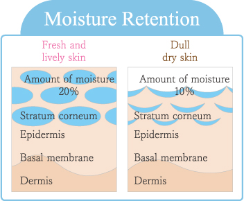 Moisture Retention