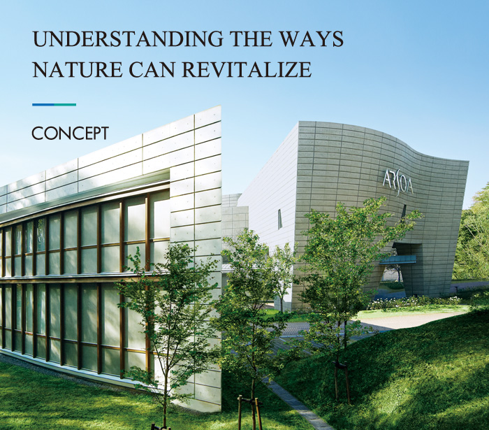 UNDERSTANDING THE WAYS NATURE CAN REVITALIZE